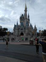 Full View of Cinderella Castle by Prentis-65