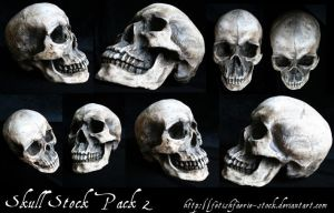 Skull Stock Pack 2 by fetishfaerie-stock