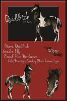 TBS Quidditch 1279 - FOAL Reference by s1088