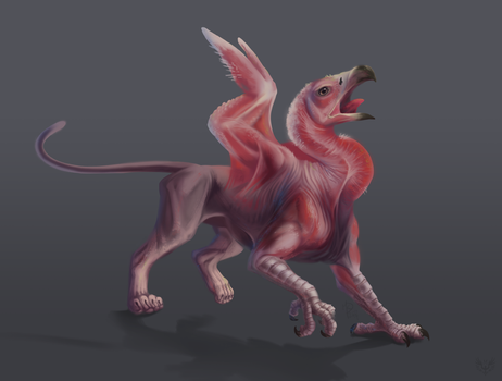 Hairless Gryphon by Firequill