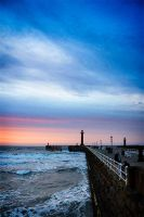 Whitby XIII by cardinal