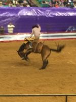 Rodeo 001 by ICE46