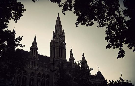 Vienna waits for you by Pigeonakacarro