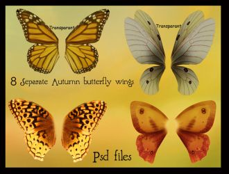 psd autumn butterfly wings set by Adaae-stock