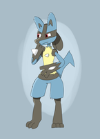 Lucario by CarbonKvernes