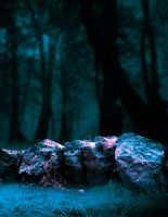Forest and rocks premade BG by StarsColdNight