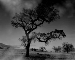 Premade Background 715 by AshenSorrow