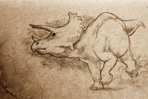 Triceratops by rfcunha