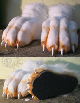 More Feet Paws by Beetlecat
