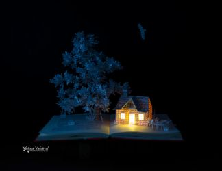 Reading in the Clouds -  Book Arts by MalenaValcarcel
