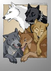 WR - Pack of Five by jidane
