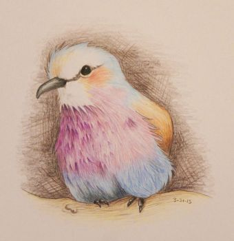 Lilac-Breasted Roller by KatNap8181