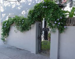 The Gate by ce3Design