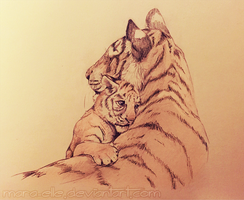 Tiger Sketch by Mara-Elle