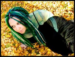 An Evergreen in Autumn III by ftsf