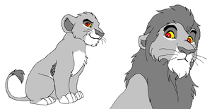 Traced TLK base - Male lion by TBAdopts