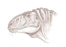 Carcharodontosaurus by Raptor-dude