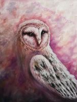 Barn owl oil painting. by bambiepies