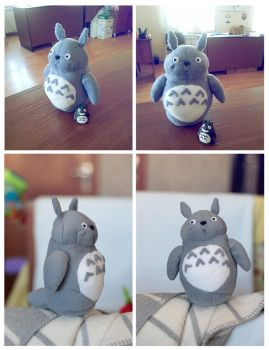 Totoro by multicoloredthoughts