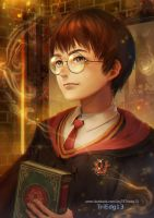 FA HarryPotter by TriEdg13 by Triedg13