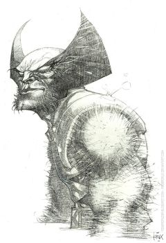 Wolverine/pencils/commission by rogercruz