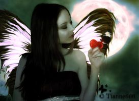 The heart of the butterfly. by tianne666