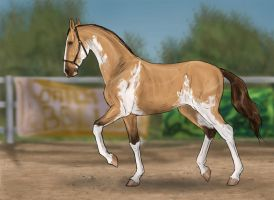 Forte - Yearling Reference by life-d-sign
