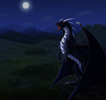 On guard of his land (ych com) by ElenPanter