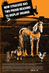 A self project poster design for the ASPCA by Carrietivity
