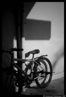 Abandoned bicycle by alasse91