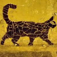 Glass cat by sequential