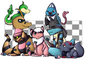 Pokemon Black2 Team