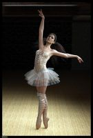 Ballerina.  by lizard59