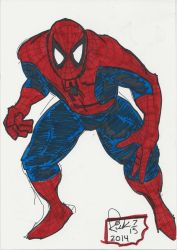 Miller Spidey Color Resize by zillaspawn