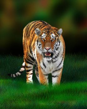 Wild Tiger on Green by Bluedarkat