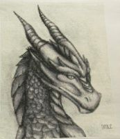 Dragon Cross Stitch -Completed by DawnMLC