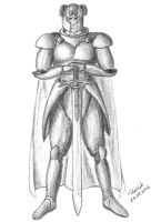 Knight with sword by parsek76