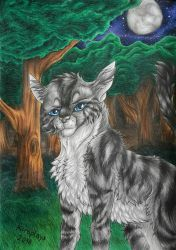 Jayfeather by Micraplays