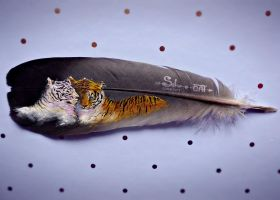 Painting on feather #4 ''Two Tigers'' by SilverDreamCat