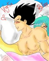 Vegeta and Bulma by LuffySwan