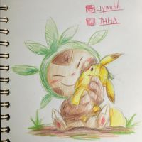 Chespin and his plushie  by jyunhh