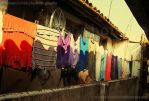 dry the clothes by kearone