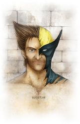 Wolverine by reirei18
