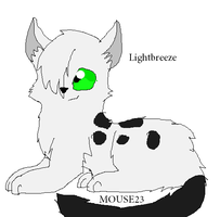 Lightbreeze OC by Its-Mousepelt