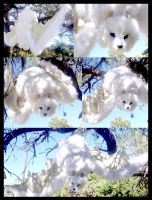 White Bat Plushie FOR SALE by Tricksters-Taxidermy