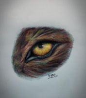 wolf eye  by nicowtc