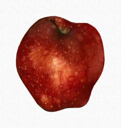 Red Apple by Lameniet