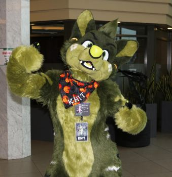 Howl 2014 - Fursuits 3 by dreamhugs