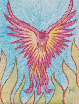 Pheonix Reborn by serenawaters