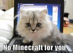 minecraft cat by Fyat66